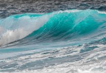 Verrückt nach Meer