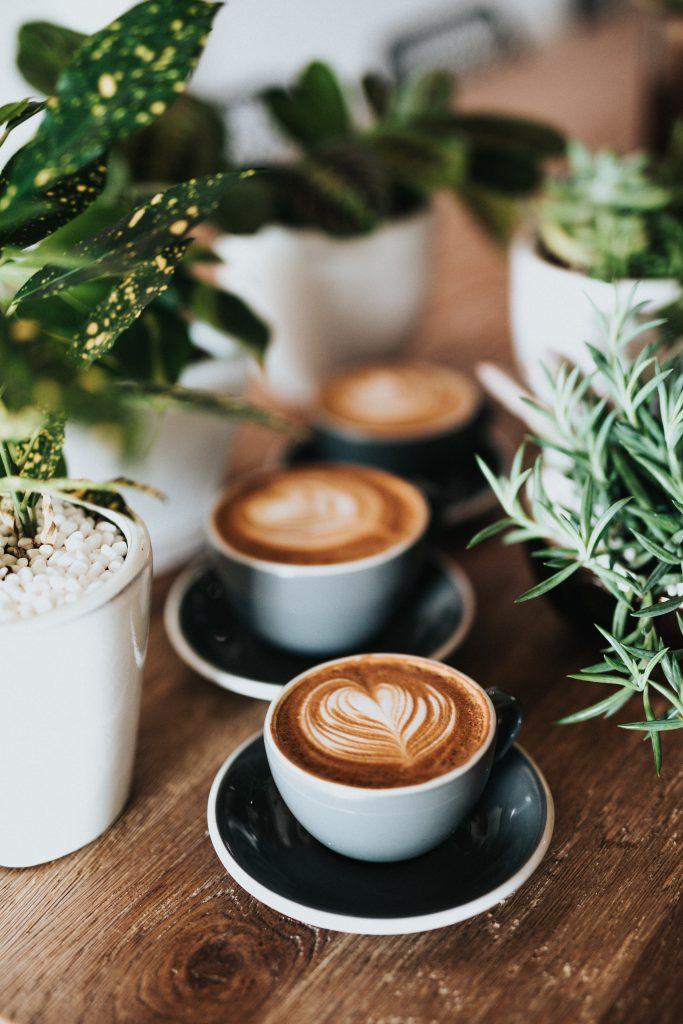 Kaffee Kreuzfahrt
