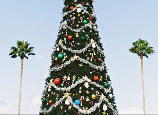 Kreuzfahrt über Weihnachten