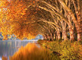 Kreuzfahrt im Herbst
